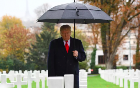 Donald Trump participating in a ceremony at the American Cemetery of Suresnes in 2018 as part of a Veteran's Day commemoration. Photo by Saul Loeb.